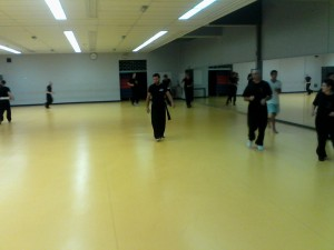 hunggarnancy-artsmartiaux-wushu-kungfu-1erentrainement-8septembre2014-4