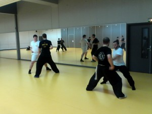 hunggarnancy-artsmartiaux-wushu-kungfu-1erentrainement-8septembre2014-9