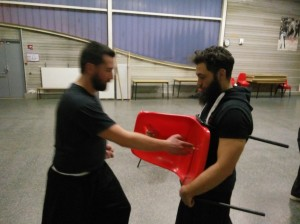 hunggarnancy-artsmartiaux-wushu-kungfu-nouvelanchinois-vocotruyen-3février2017-12