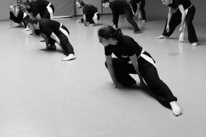 hunggarnancy-artsmartiaux-wushu-kungfu-stage-muyfakune002