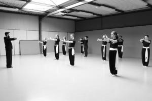 hunggarnancy-artsmartiaux-wushu-kungfu-stage-muyfakune003