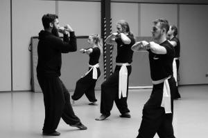 hunggarnancy-artsmartiaux-wushu-kungfu-stage-muyfakune004