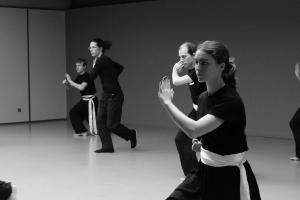 hunggarnancy-artsmartiaux-wushu-kungfu-stage-muyfakune005