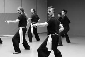 hunggarnancy-artsmartiaux-wushu-kungfu-stage-muyfakune006
