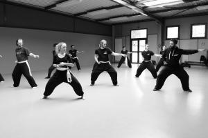 hunggarnancy-artsmartiaux-wushu-kungfu-stage-muyfakune007