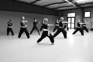 hunggarnancy-artsmartiaux-wushu-kungfu-stage-muyfakune008