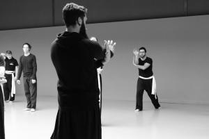 hunggarnancy-artsmartiaux-wushu-kungfu-stage-muyfakune011