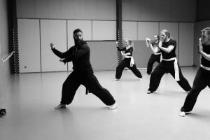 hunggarnancy-artsmartiaux-wushu-kungfu-stage-muyfakune014