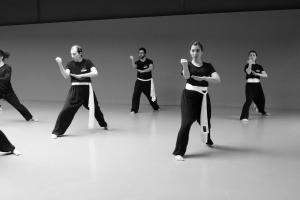 hunggarnancy-artsmartiaux-wushu-kungfu-stage-muyfakune015
