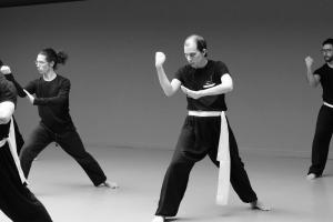 hunggarnancy-artsmartiaux-wushu-kungfu-stage-muyfakune016