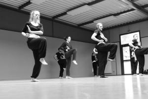 hunggarnancy-artsmartiaux-wushu-kungfu-stage-muyfakune019