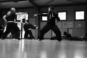 hunggarnancy-artsmartiaux-wushu-kungfu-stage-muyfakune020