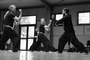 hunggarnancy-artsmartiaux-wushu-kungfu-stage-muyfakune021