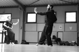 hunggarnancy-artsmartiaux-wushu-kungfu-stage-muyfakune022