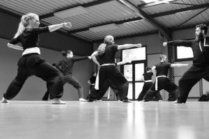 hunggarnancy-artsmartiaux-wushu-kungfu-stage-muyfakune023