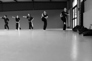 hunggarnancy-artsmartiaux-wushu-kungfu-stage-muyfakune024