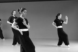hunggarnancy-artsmartiaux-wushu-kungfu-stage-muyfakune026