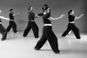 hunggarnancy-artsmartiaux-wushu-kungfu-stage-muyfakune027