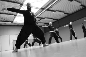 hunggarnancy-artsmartiaux-wushu-kungfu-stage-muyfakune028