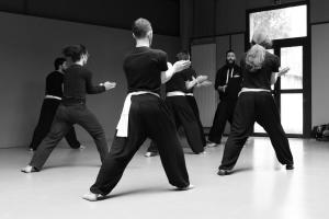 hunggarnancy-artsmartiaux-wushu-kungfu-stage-muyfakune029
