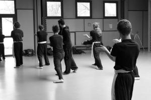 hunggarnancy-artsmartiaux-wushu-kungfu-stage-muyfakune031
