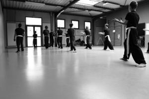 hunggarnancy-artsmartiaux-wushu-kungfu-stage-muyfakune032