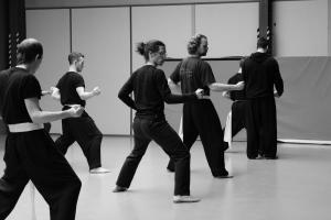 hunggarnancy-artsmartiaux-wushu-kungfu-stage-muyfakune033
