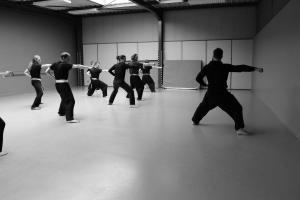 hunggarnancy-artsmartiaux-wushu-kungfu-stage-muyfakune034