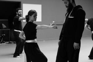 hunggarnancy-artsmartiaux-wushu-kungfu-stage-muyfakune035