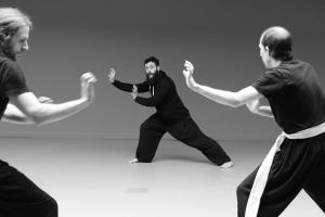 hunggarnancy-artsmartiaux-wushu-kungfu-stage-muyfakune036