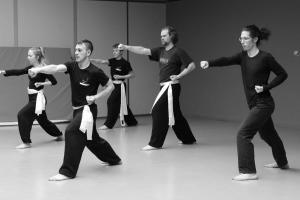 hunggarnancy-artsmartiaux-wushu-kungfu-stage-muyfakune040