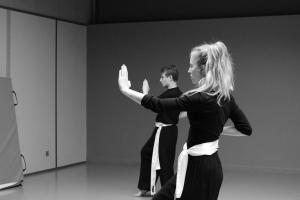 hunggarnancy-artsmartiaux-wushu-kungfu-stage-muyfakune045